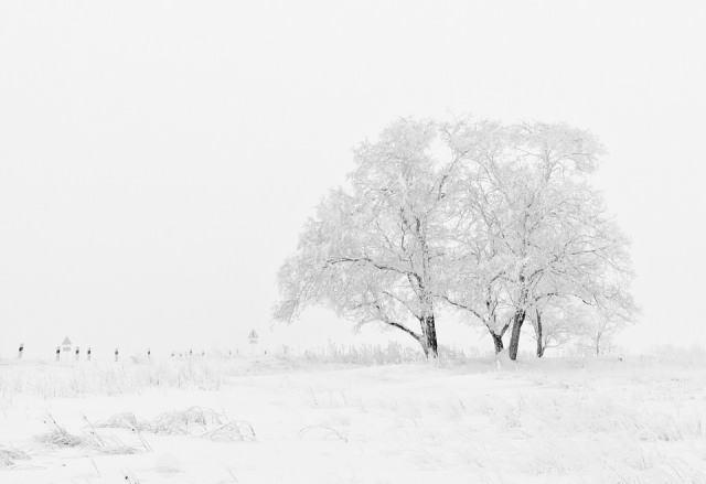 Inspi Pics Décembre.jpg